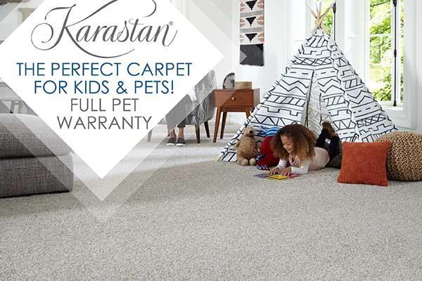 Karastan THE PERFECT CARPET FOR KIDS & PETS! Full Pet Warranty