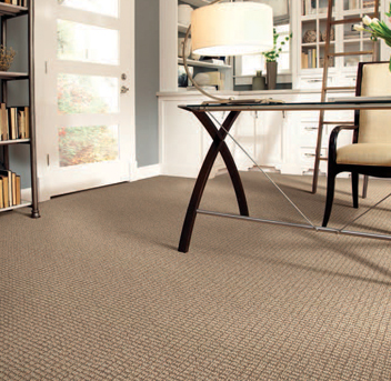 Office scene with tan Infinity nylon carpet